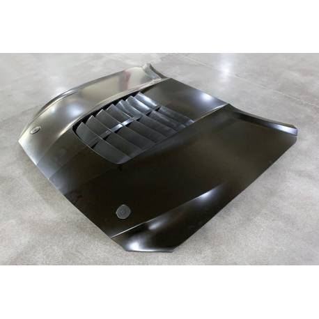 Capó Ford Mustang Look GT500 15-17 Aluminio